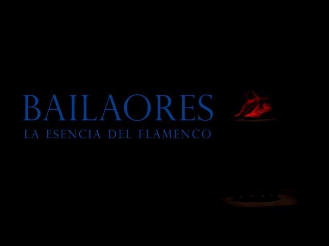 BAILAORES 2014