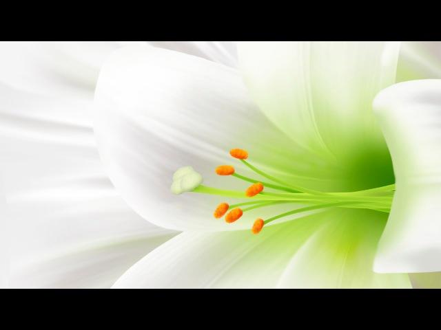Зинаида Гиппиус - Стихотворения