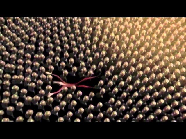 TRANCE) Неописуемый марш (Aeden - Nocturnes (Ice Upon Fire Мix))