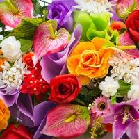 Заказ цветов оптом цены купить оптом тюльпаны краснодарский край