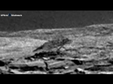 Ancient Aliens On Mars: Bizarre Animal Wolf Captured By Curiosity
