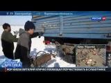 Русская Арктика  Дорога на Север  Специальный репортаж Александра Лукьянова