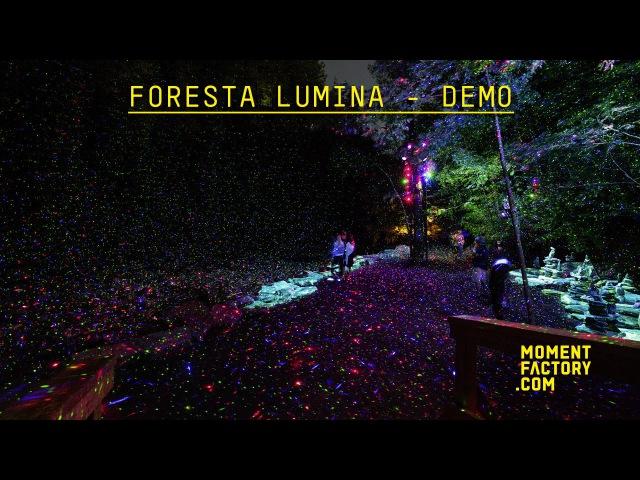 Foresta Lumina: From Park to Illuminated Forest [DEMO]