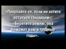 В России возрождается учение о питании духовной энергией Праной