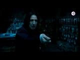 Все фильмы про Гарри Поттера | По пятницам в 20:00 на ТВ-3