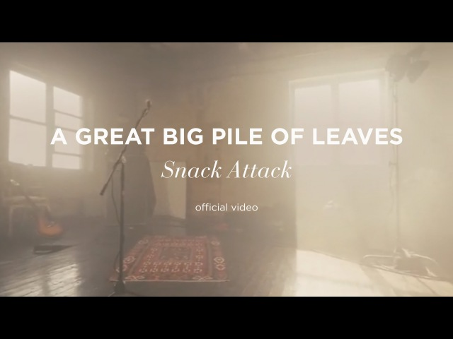 A Great Big Pile of Leaves Snack Attack Official Music Video