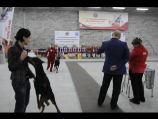 12 сентября 2015 г. выставка ранга КЧФ КЦ