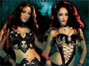 Gothic Bellydance Revelations instant video / DVD at WorldDanceNewYork belly dance