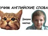 Учим английский с юмором, Домашние животные, Сергей Романович