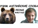 Учим английский с юмором, Лесные животные, Сергей Романович
