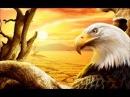 James Last - El condor pasa