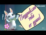 Zoobe Зайка Поздравление на любой праздник!