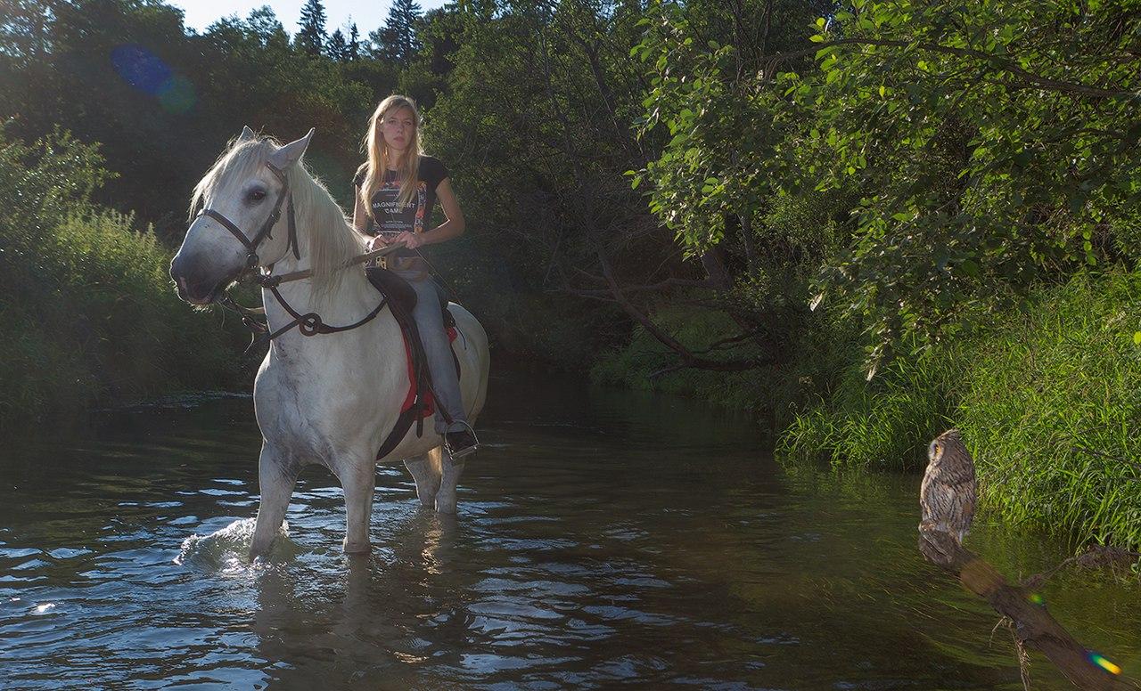 конный дворик