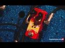 Summer NAMM '13 - Z. Vex Effects Fuzz Factory 7, Fuzzolo, Channel 2 Snow Box Noise Generator Demos