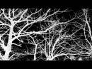 Les Discrets Ariettes oubliées official music video