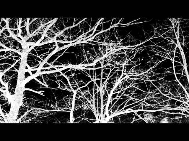 Les Discrets - Ariettes oubliées [official music video]