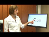 What is a Root Canal? Austin Dentist Dr. Emily Craft, Pecan Park Smile Family Dentistry