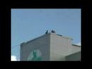 Экстрим-забава: прыжки с высоты на верёвке (роупджампинг) в День ВДВ. 2015 год. Видео А.Наумова
