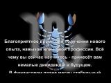 Гороскоп для Скорпиона на декабрь 2015 года.