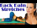 Back Pain Relief Stretches and Exercises, Beginners Yoga Follow Along At Home Class