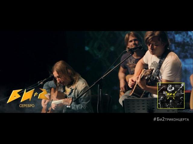 Би-2 - Серебро. LIVE. Квартирник (акустика)