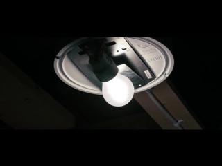 Attic Panic / Паника на чердаке (2015) короткометражный фильм (русские субтитры)