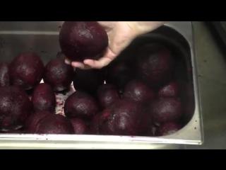 Чистка свеклы с помощью картофелечистки Тайфун МОК