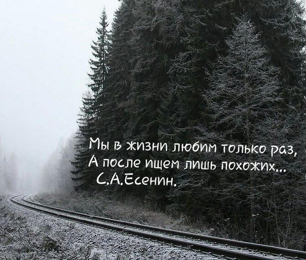 https://pp.vk.me/c629214/v629214519/181d7/yND_ue1hI8U.jpg