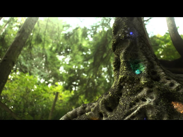 LIQUID STRANGER - The Gargon (OFFICIAL VIDEO) from
