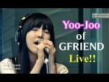 정오의 희망곡 김신영입니다 –  여자친구(유주) - Gravity,  Girlfriend(Yoo-Joo) - Gravity 20150206