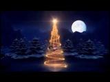 Зимняя сказка от феи в Новогоднюю ночь!С Новым Годом!