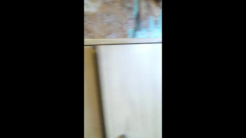 кошмар любой хозяйки - тараканы на кухне!!