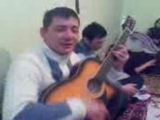 gitar_shiraz_tiwsxan