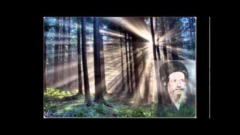 Baal HaSulam Tzadik Ke Tamar Ifrach