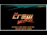 Играем в The Crew: Wild Run / Первое впечатление (ЗБТ)