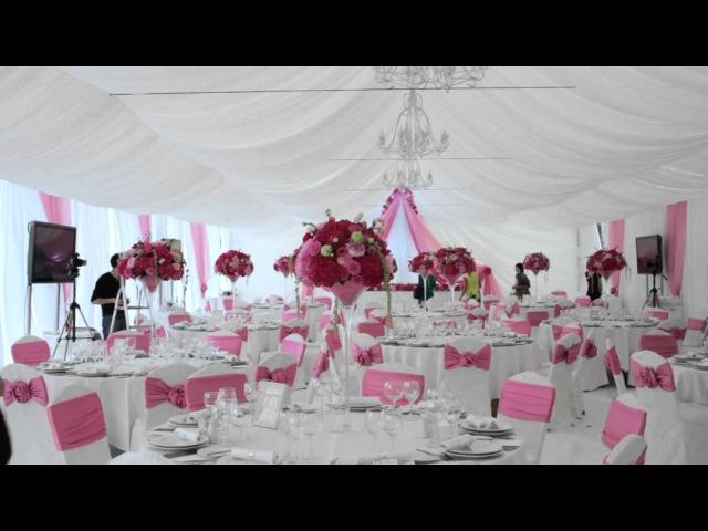 Агентство Идеальная Свадьба в работе