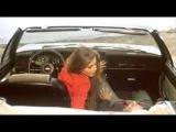 Il Bisbetico Domato Movie Clip - Si E No