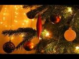 М. К. - Прощание с новогодней елкой (Булат Окуджава)