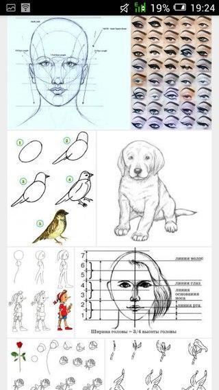 Как научится рисовать за короткое время