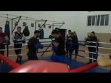 Бокс, тренировка, работа на лапах