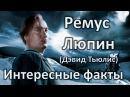 ϟ Интересные факты Ремус Люпин Дэвид Тьюлис ϟ