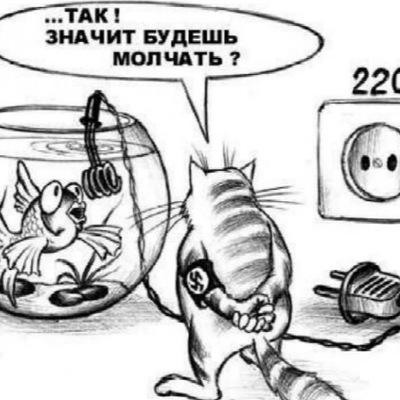 Илья Можевельников