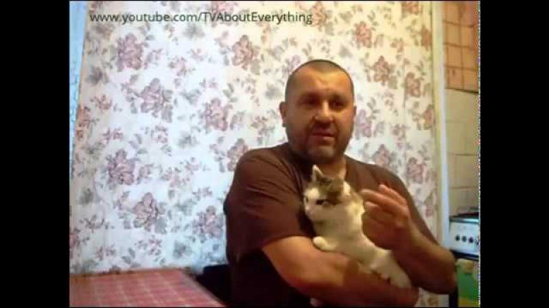 Как отучить кошку гадить Совет
