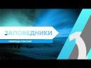 RTG TV TOP10 - Заповедники. Природа России