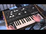 Moog Prodigy synthesizer demo