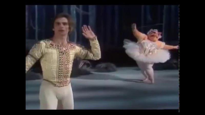 Rudolph Nureyev Muppet Show Рудольф Нуриев и мисс Пигги
