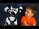 Игрушки Роботы на русском. Робот Robosapien WowWee 8081. Роботы на пульте управления.
