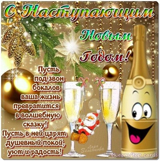 Фото №393551067 со страницы Виталия Куйбара