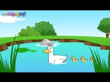 Old MacDonald Had a Farm - Nursery Rhymes - English Song For Kids - animal song
