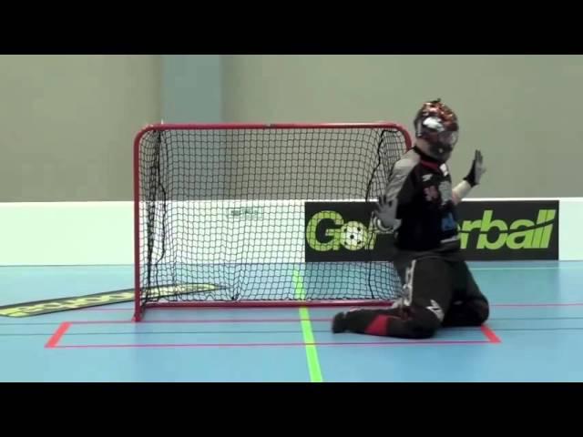 ФЛОРБОЛ/ УЧЕБНОЕ ПОСОБИЕ КРУТО /Floorball goalie training